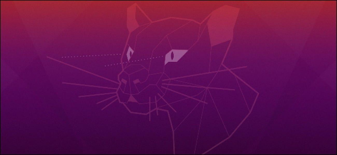 ubuntu-focal-fossa